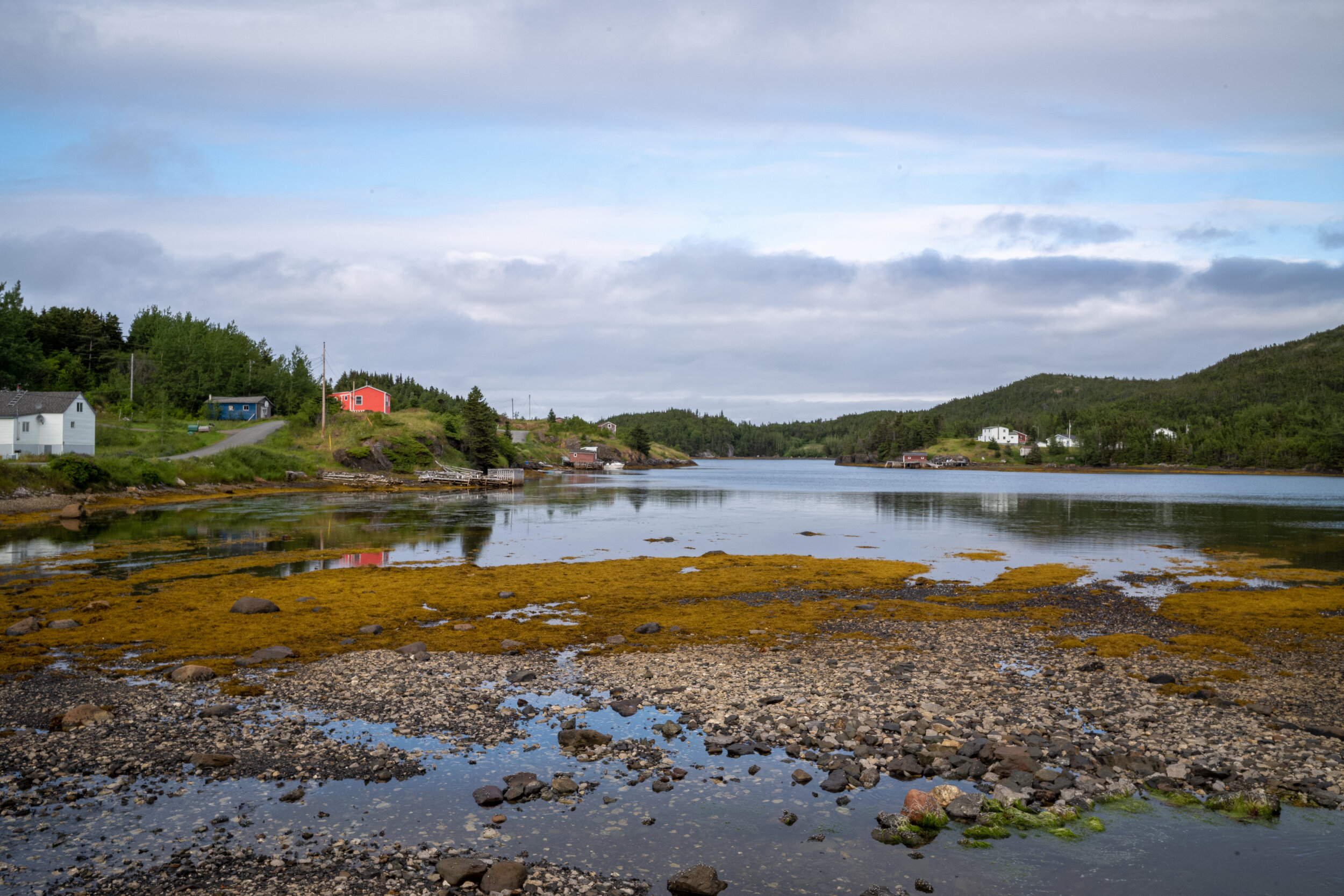"""Low tide, Roger's Cove. The """"Coral""""Cabin, where we stayed is, is on the left."""