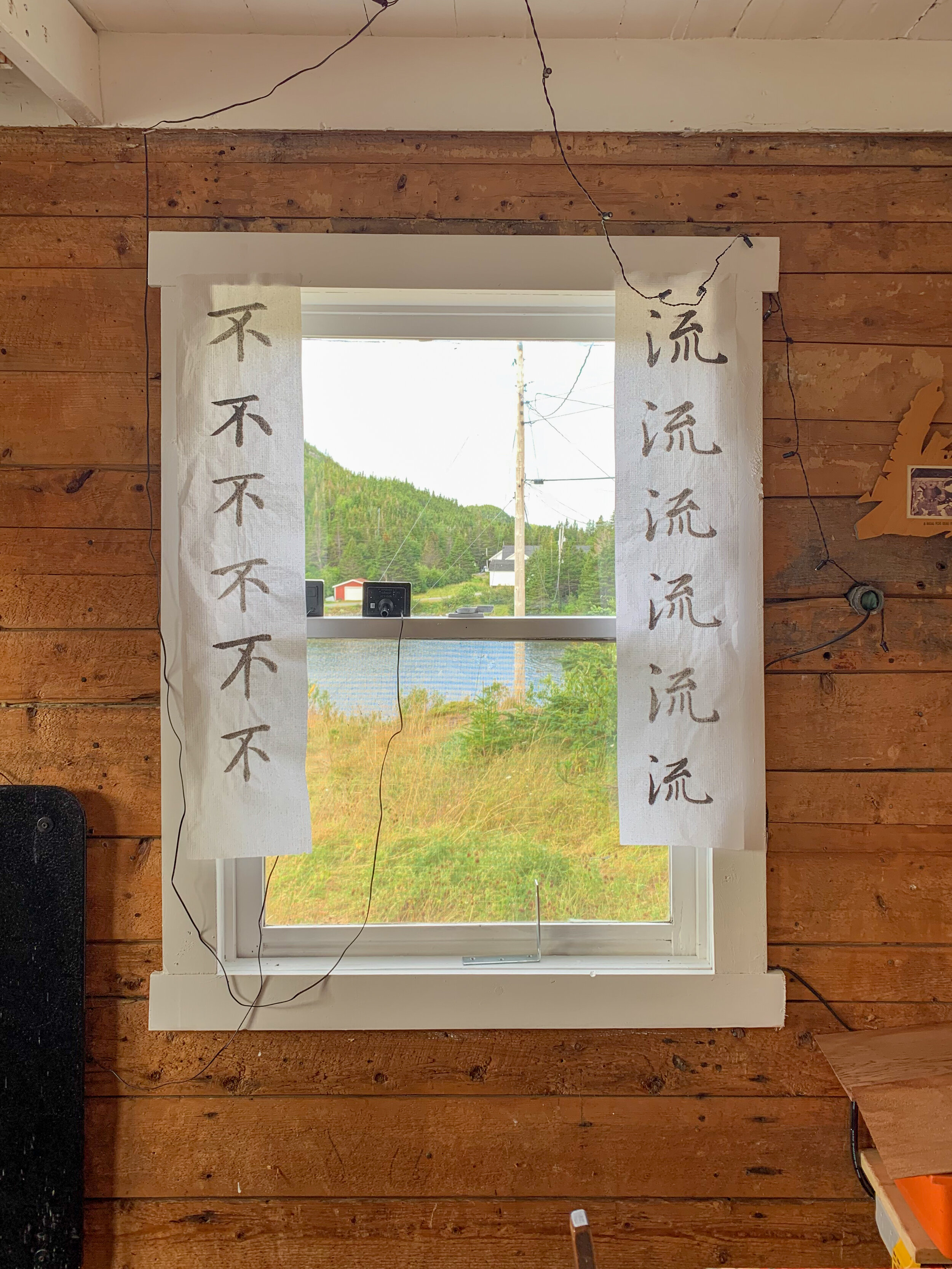 West-facing window in Living Room. While I photographed, my wife continued practicing her Chinese Calligraphy.