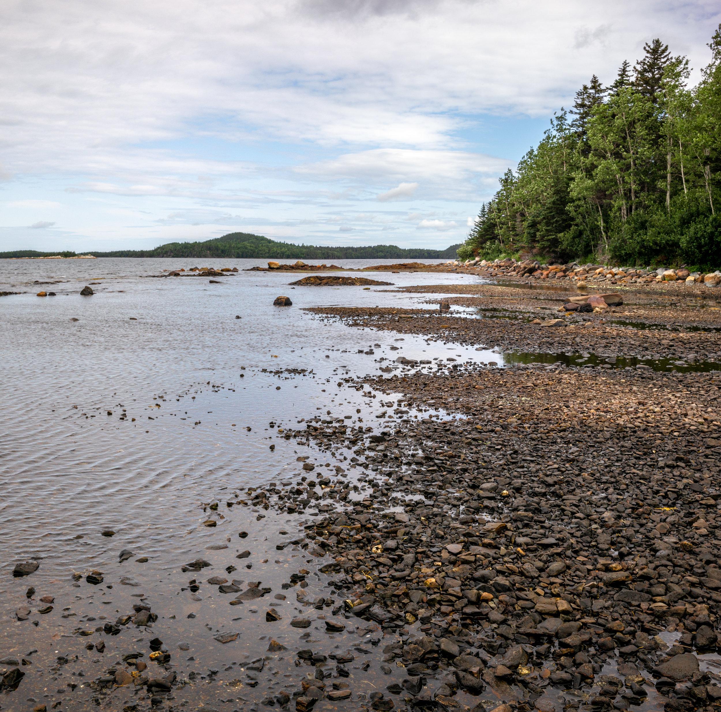 Shoreline of Boyd's Cove.
