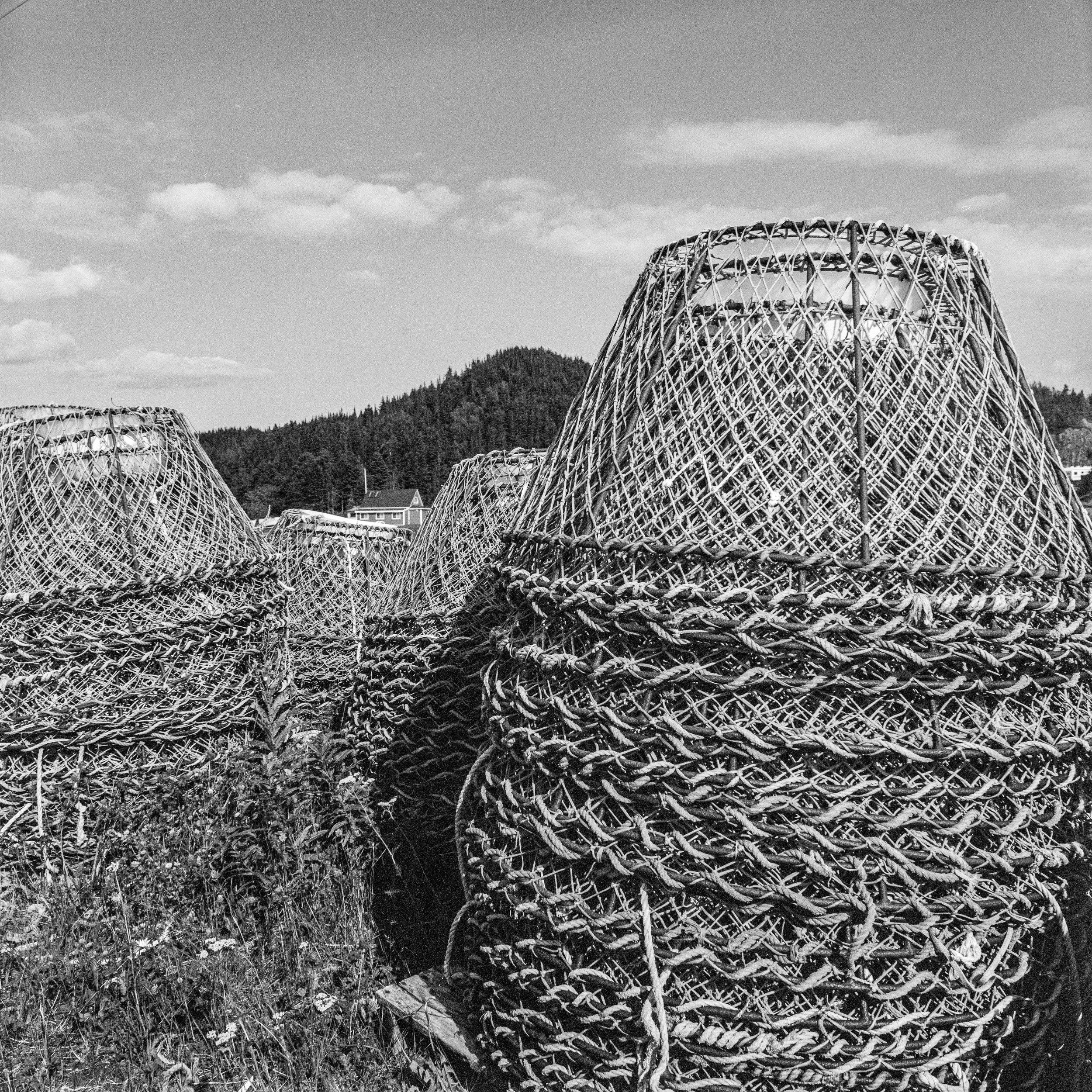 Crab traps, Cobbs Arm, Newfoundland