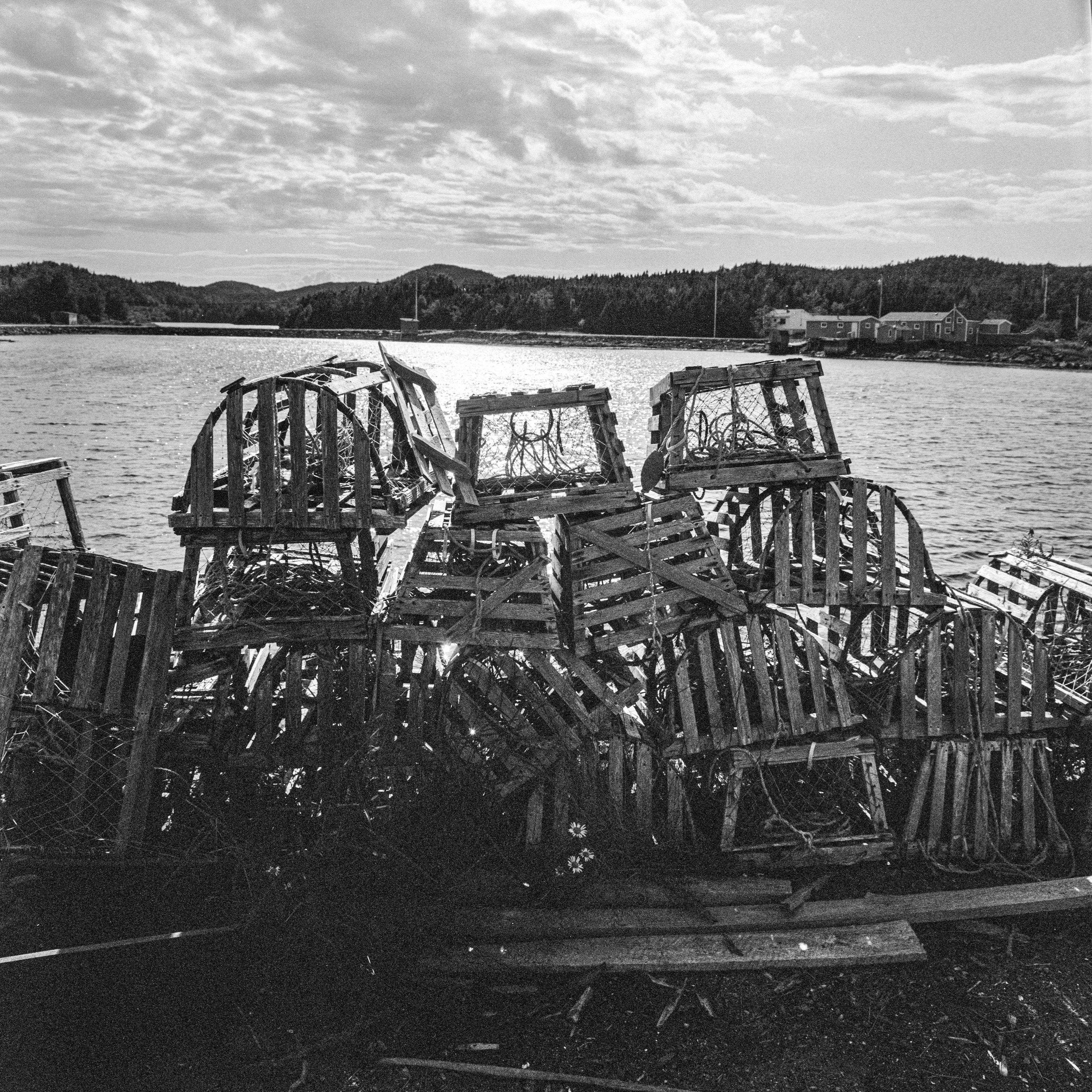 Lobster traps, Cobbs Arm, Newfoundland