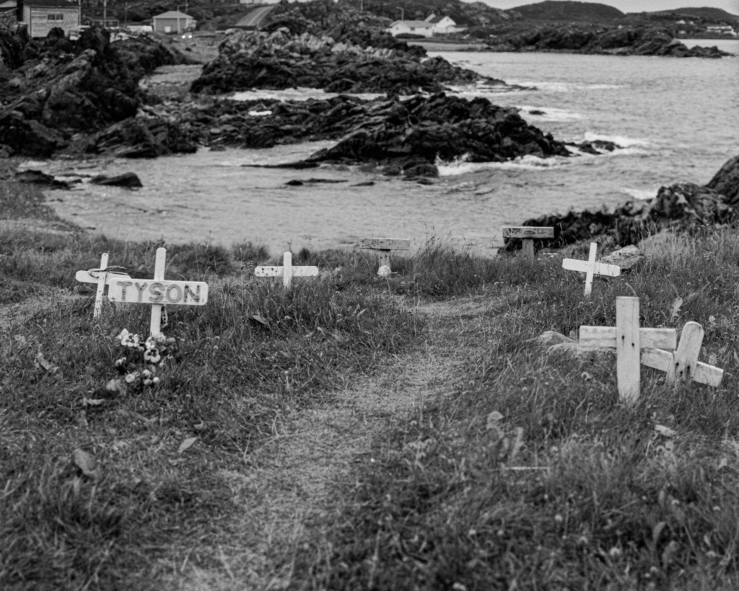 Markers by the sea, Browney's Cove, Newfoundland