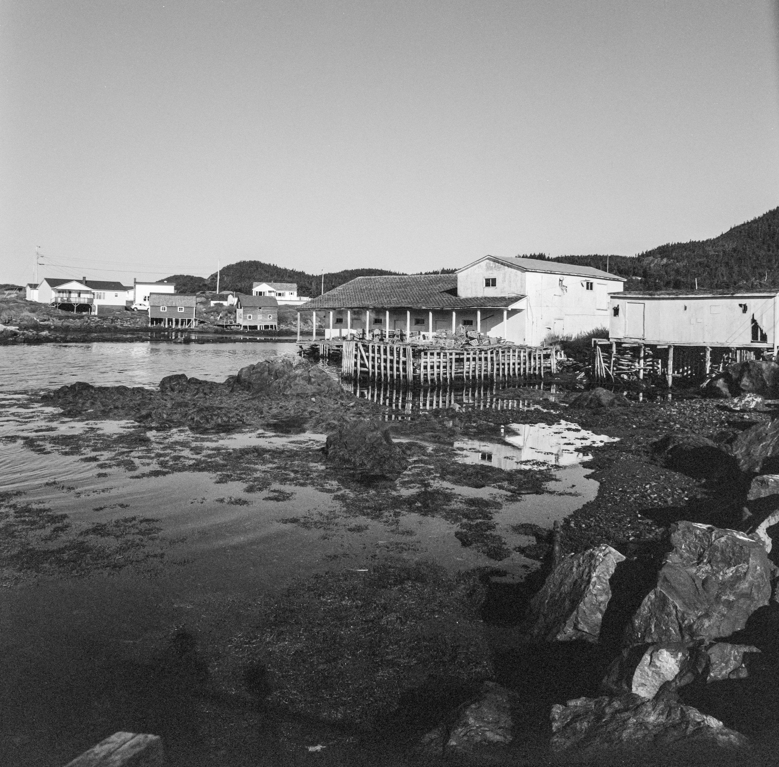 Fish Plant, Salt Harbour Newfoundland.
