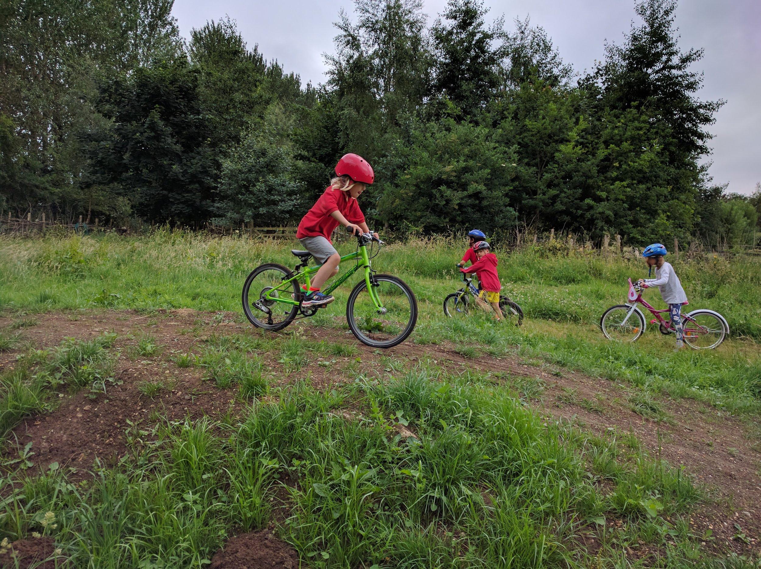 Bikes in the fields