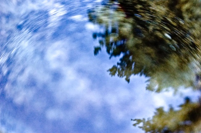 Into a Reflection   Mark Lindsay