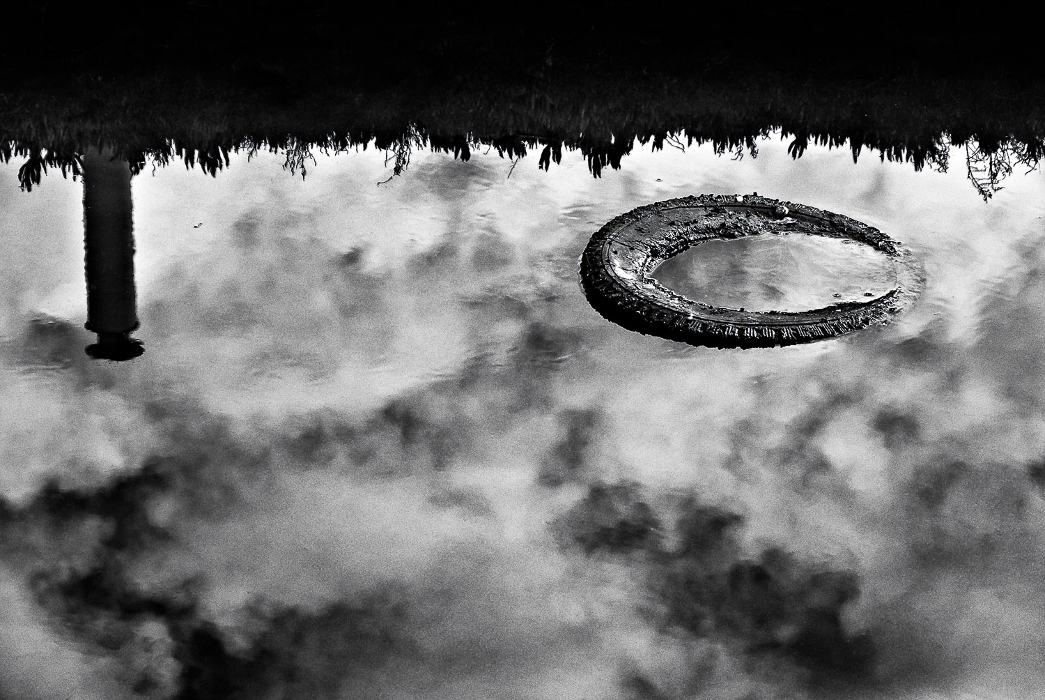Tire with Reflections | Mark Lindsay