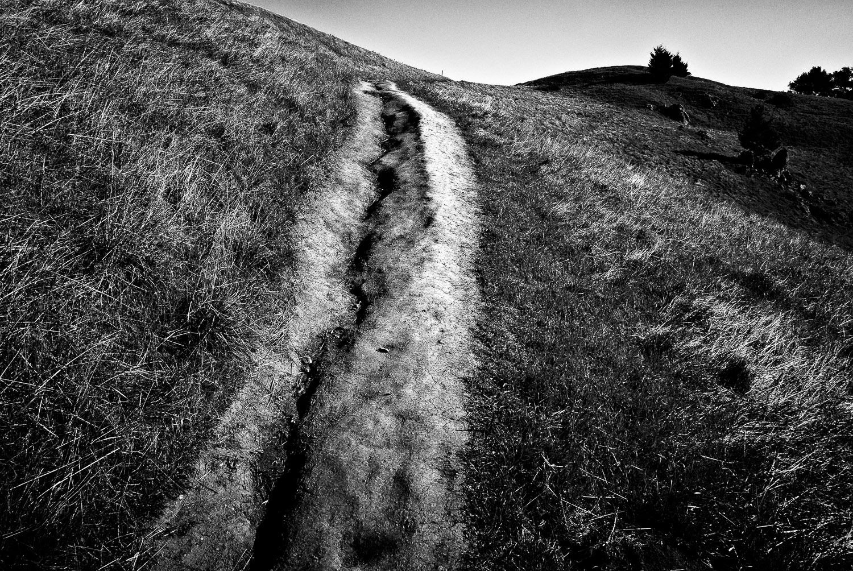 Path and Coastal Hills, Marin County | Mark Lindsay