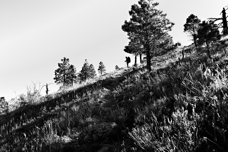 Saddle Mountain Silhouette   Mark Lindsay