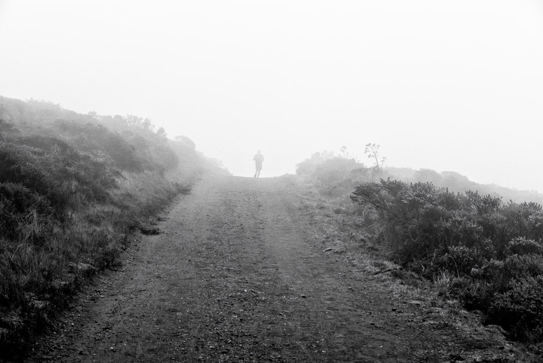 Runner and Fog   Mark Lindsay