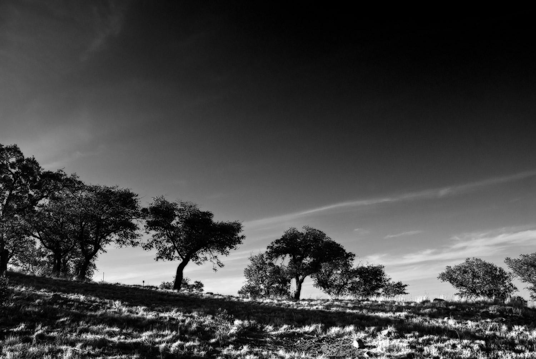 Deep Sky | Mark Lindsay