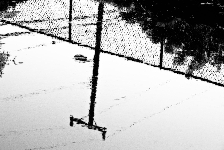 Reflections of a Telephone Pole | Mark Lindsay