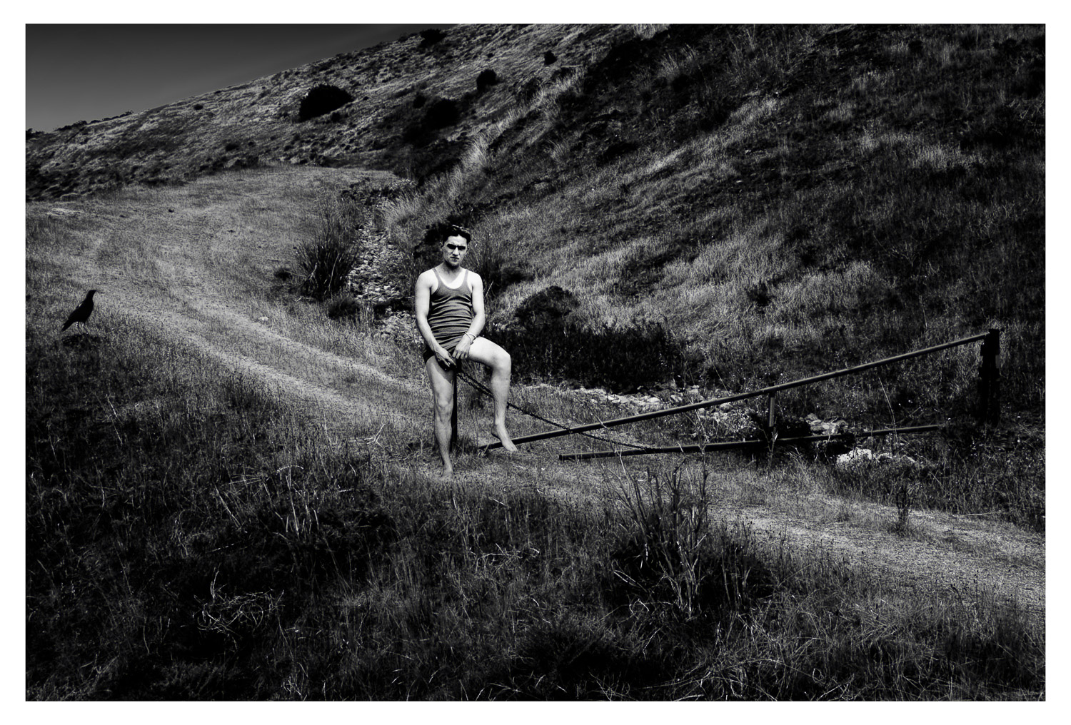 #1 from the series, Desolation's Comfort   Mark Lindsay