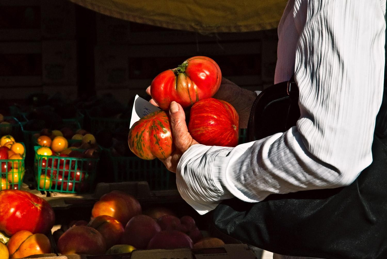 Tomatoes in Grasp | Mark Lindsay