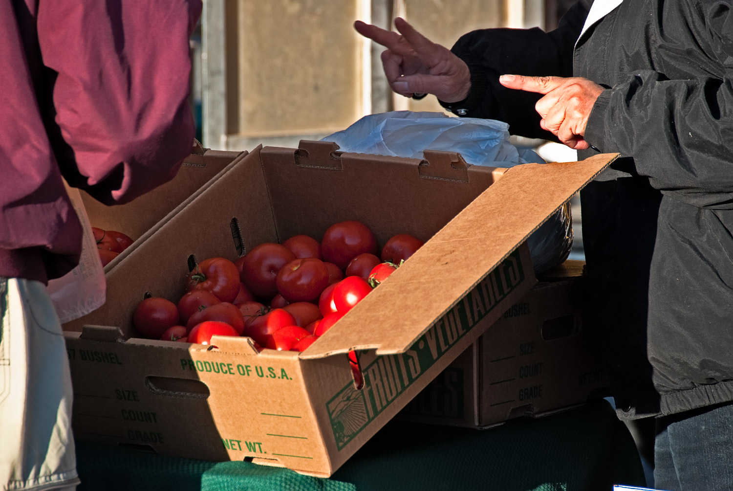 Two Hands and a Box of Tomatoes | Mark Lindsay