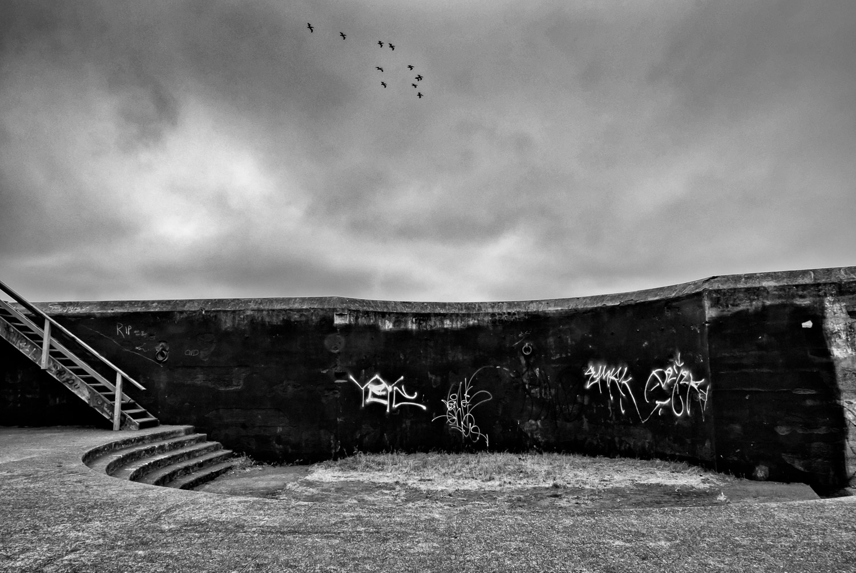 Birds in Flight over Bunker | Mark Lindsay