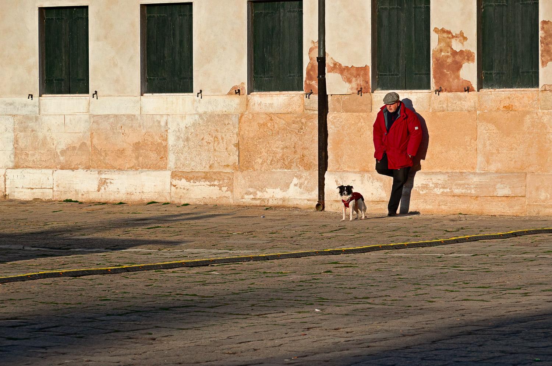 Man, Dog, and Wall