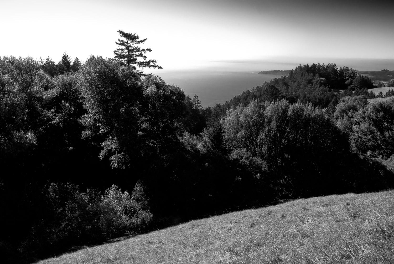 Descent into Shadow