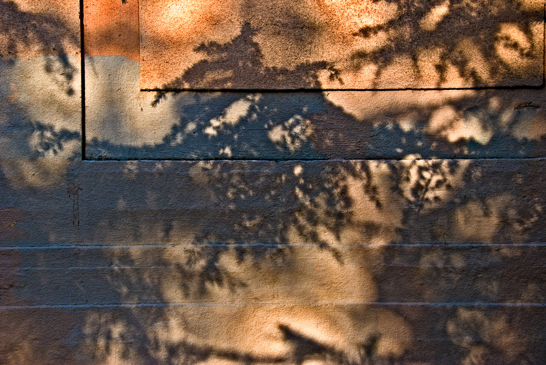 Shadow, Larkspur Railroad Station   Mark Lindsay