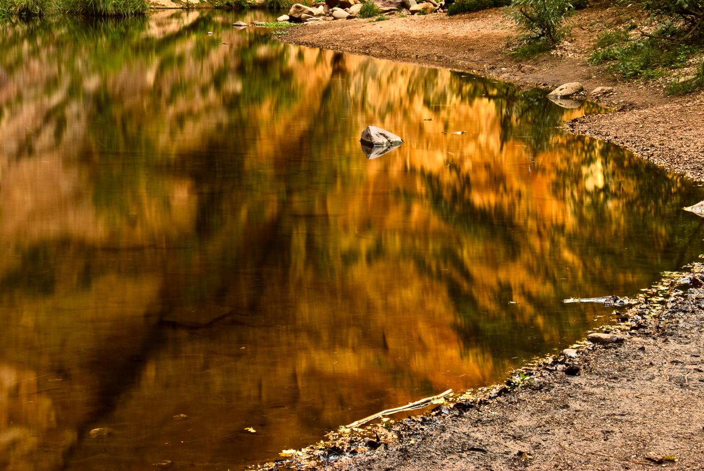 Oak Creek at West Fork | Mark Lindsay