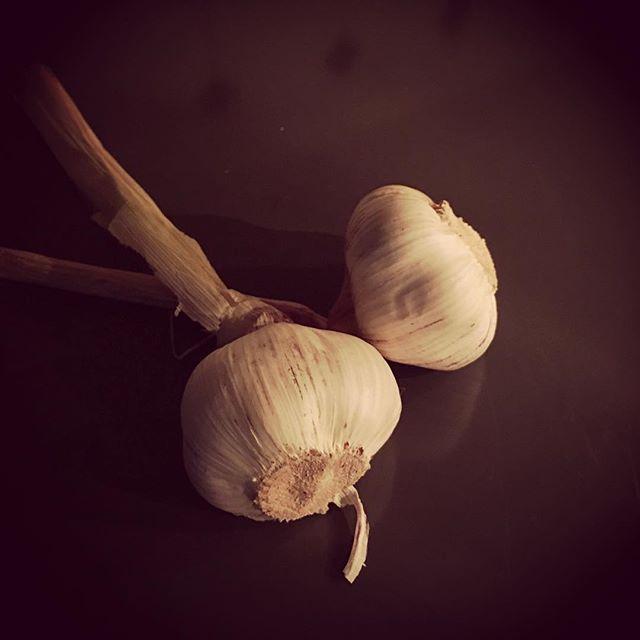 Garlic in a pre-dawn kitchen