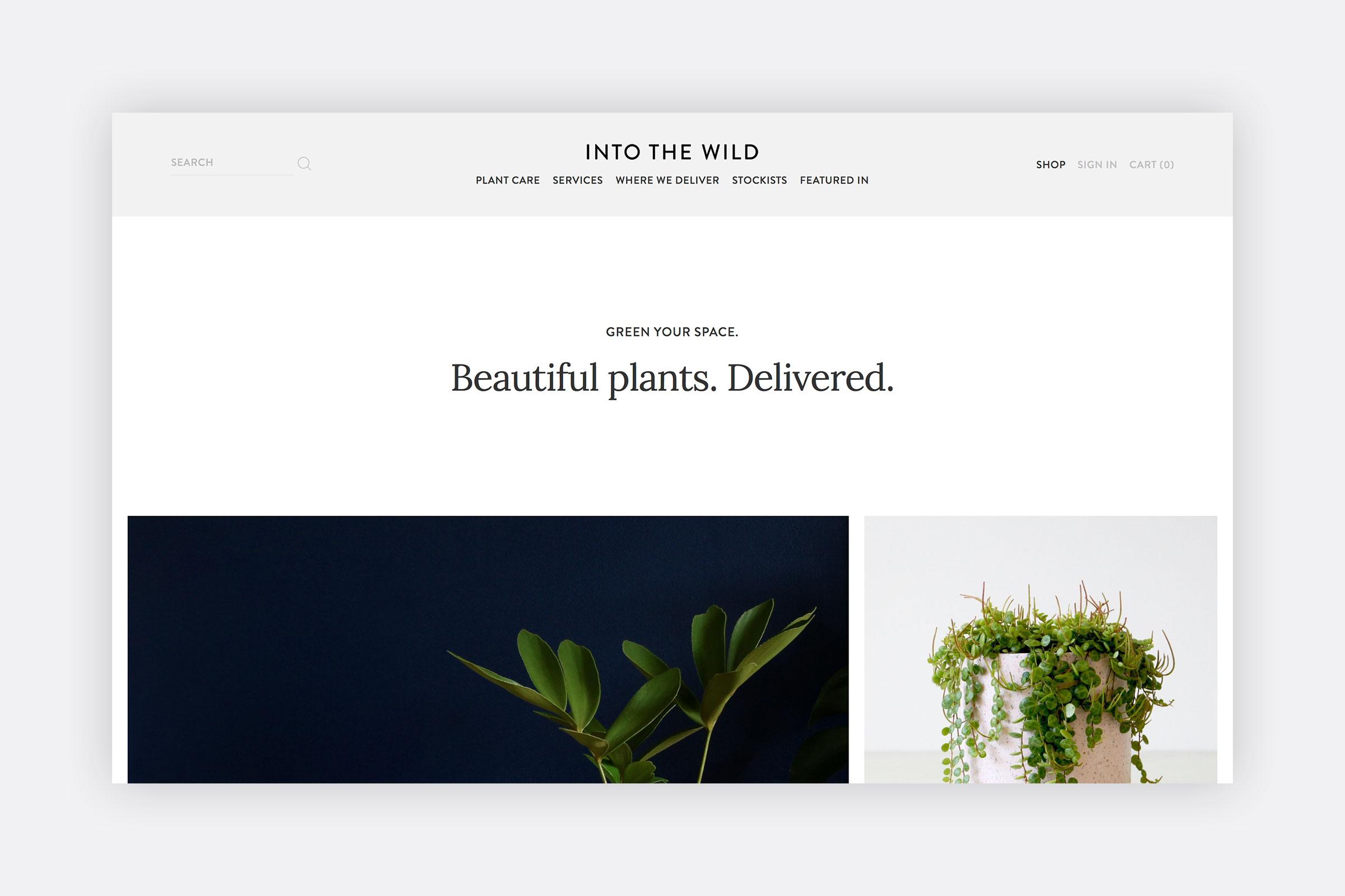 Into the Wild  Digital design ( intothewildinteriors.com.au )
