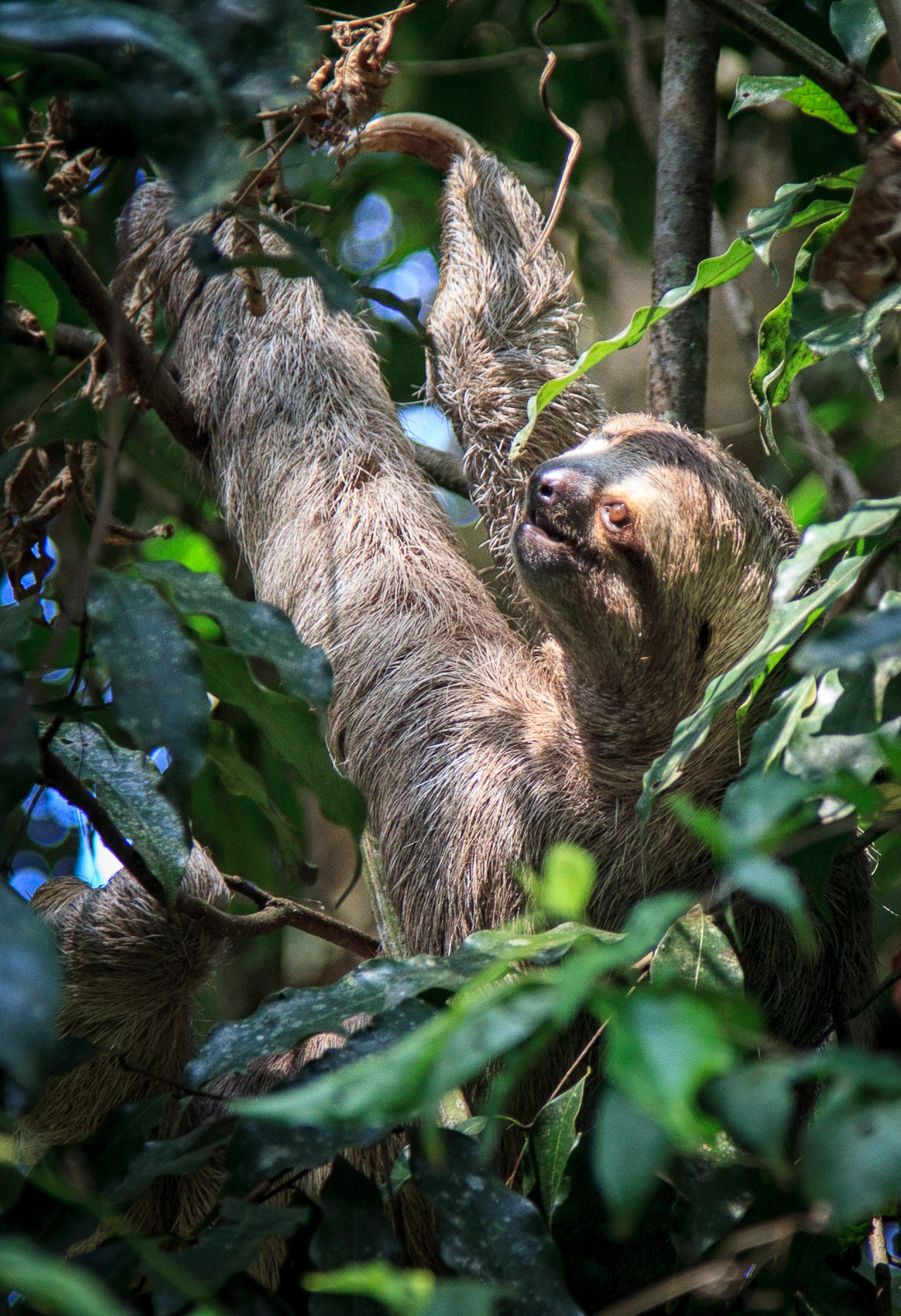 Costa Rica-0218.jpg