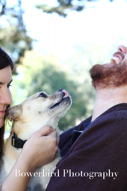 Puppy lick!© Bowerbird Photography 2012; Engagement Photography at the Panhandle, San Francisco.