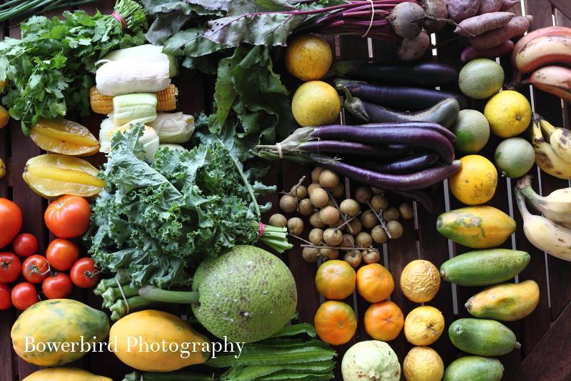 Farmers' market haul!© Bowerbird Photography 2012; Travel Photography Kauai, Hawaii.