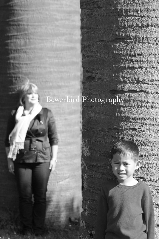 By the big palm trees. © Bowerbird Photography 2012; Family Photography in Golden Gate Park, San Francisco.