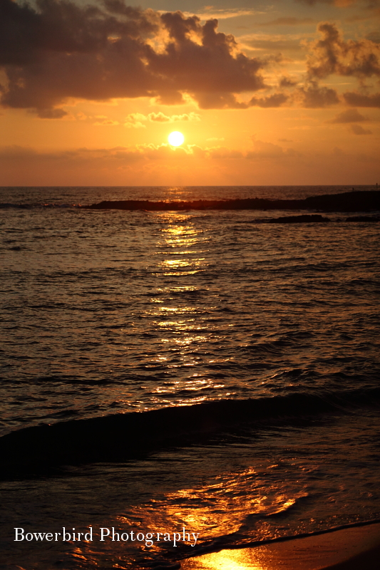 Aloha Hawaii.© Bowerbird Photography 2012; Travel Photography Kauai, Hawaii.