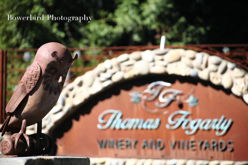 The Fogarty Winery makes a wonderful wedding venue, with sweeping views of the Bay.© Bowerbird Photography 2012; Wedding Photography at Fogarty Vineyards, Woodside.