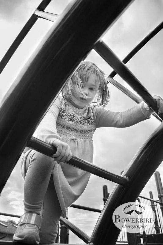 © Bowerbird Photography 2013; San Francisco Family Photography.