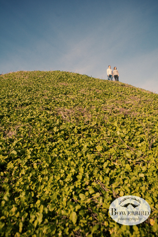 Up on the top of the hill, looking down at the canyon. © Bowerbird Photography 2013; Engagement Photography at Glen Canyon, San Francisco.