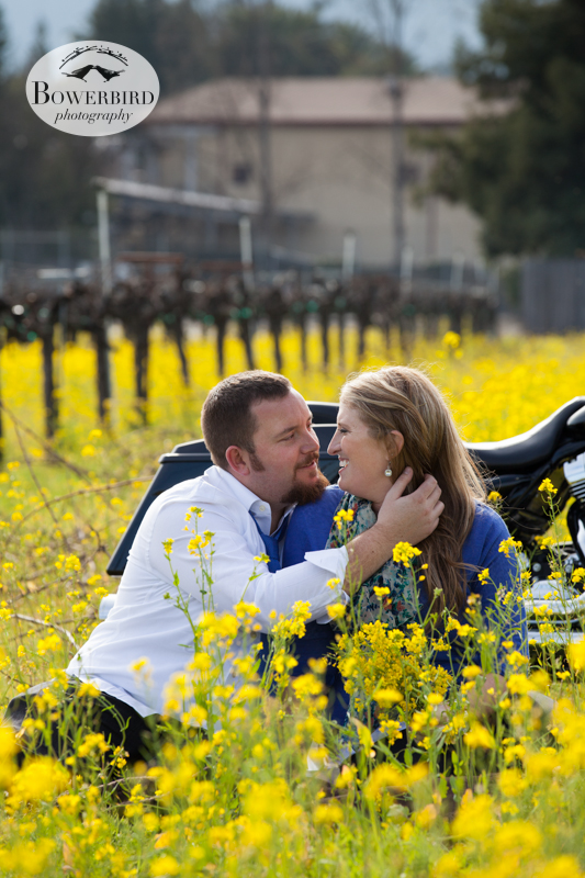 © Bowerbird Photography 2013; Engagement Photography in Napa Valley, CA.