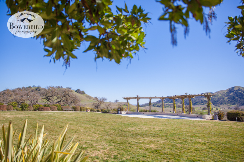 A gorgeous view of where the ceremony will happen. © Bowerbird Photography 2013, Clos LaChance Winery in San Martin, Wedding Site Visit.