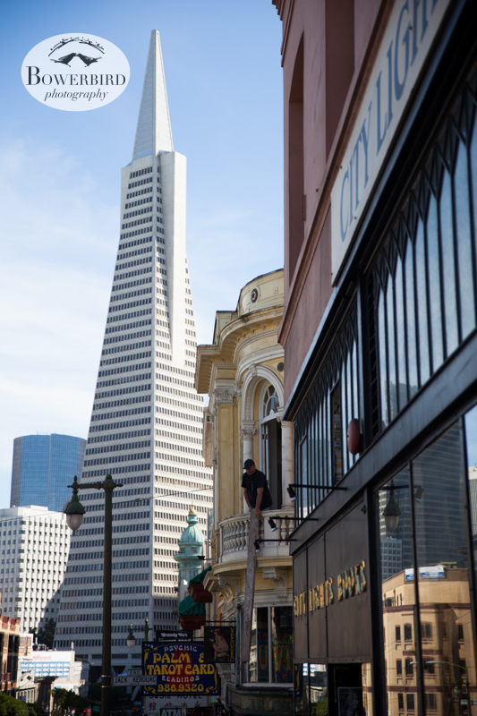 The Transamerica Pyramid and City Light Books. © Bowerbird Photography 2013; Engagement Photography Site Visit, San Francisco.