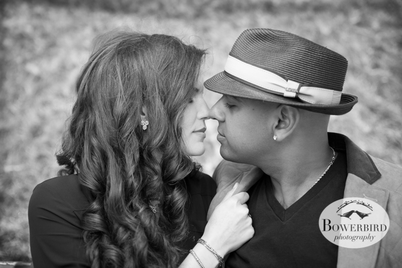 A kiss in the grass. © Bowerbird Photography 2013; San Francisco Engagement Photo.