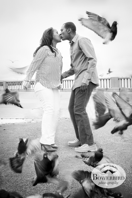 A kiss surrounded by birds. © Bowerbird Photography 2013; San Francisco, Engagement Photo.