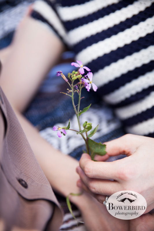 Wild flowers in bloom. © Bowerbird Photography 2013; San Francisco Engagement Photo.