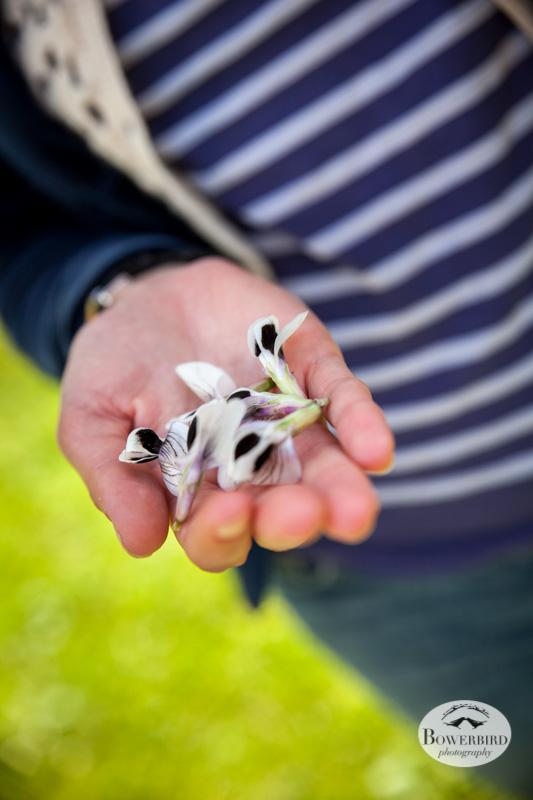 Eli brought edible fava bean flowers! © Bowerbird Photography 2013.