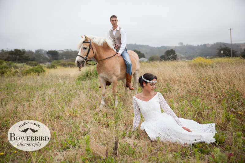 © Bowerbird Photography 2013, Half Moon Bay Horse Ranch.