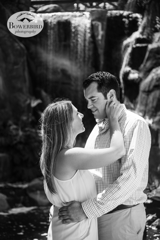 By the waterfall. © Bowerbird Photography 2013, San Francisco Engagement Photo at Stow Lake in Golden Gate Park.