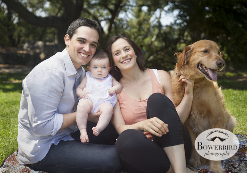 Berkeley Baby and Family Photography© Bowerbird Photography 2013.