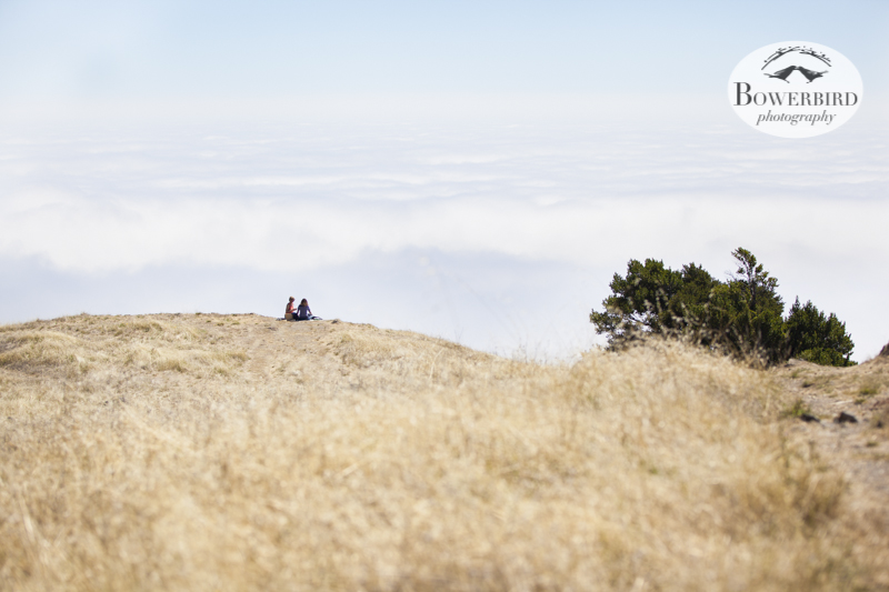 A picnic in the clouds on Mt. Tam. © Bowerbird Photography 2013.
