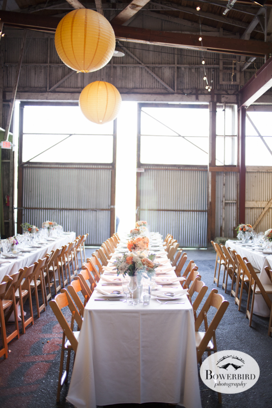 Point Reyes Wedding Photography at Toby's Feed Barn. © Bowerbird Photography 2013.