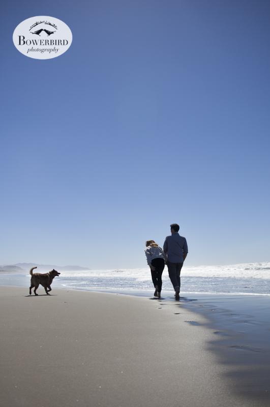 San Francisco Engagement Photos at Ocean Beach. © Bowerbird Photography 2013.