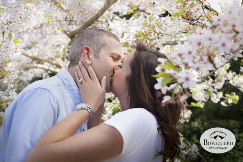 San Francisco Engagement Photo Session in Golden Gate Park with cherry blossoms. © Bowerbird Photography, 2014