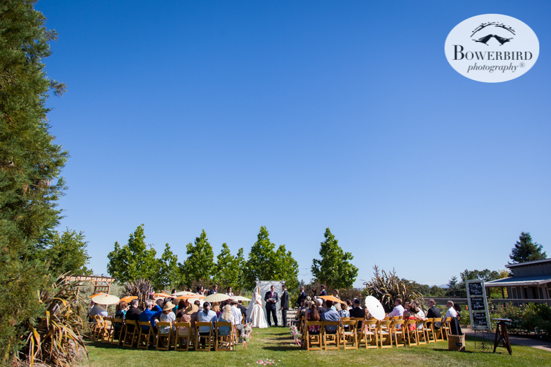 This is how beautiful a wedding ceremony can look at DeLoach Vineyards. Sonoma Wedding Photographer. © Bowerbird Photography 2016