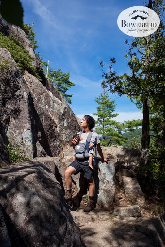 Beech Mountain Trail, Acadia National Park.Traveling with baby in Acadia National Park, Mt. Desert Island, Bar Harbor, Maine.© Bowerbird Photography 2016