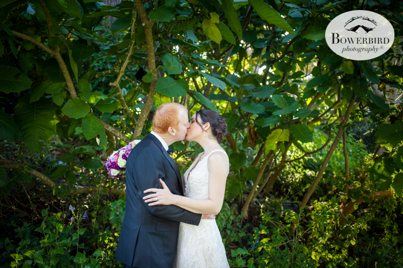 Romance under the trees. SF Botanical Garden wedding photos. © Bowerbird Photography 2016